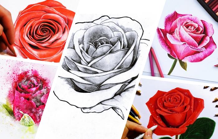 comment dessiner une rose blanc et noir ou en couleurs, technique dessin au crayon facile, modèle rose réaliste en couleurs