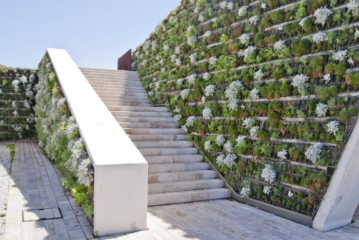 idée pour l'emplacement original d'un jardin vertical, une déco d'escalier de jardin avec cultures verticales