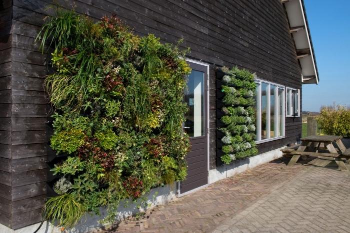 deux cadres muraux végétalisés posés à côté de la porte de la terrasse qui s'harmonise avec la façade en bois foncé