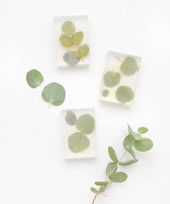 faire son savon en base de savon glycérine transparente et des feuilles vertes à l interieur