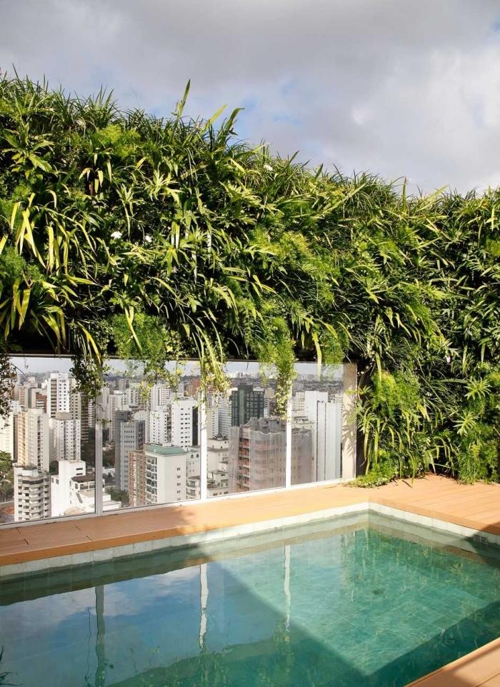 un couloir de nage moderne aménagée sur un toit-terrasse d'une conception moderne avec brise vue vegetal