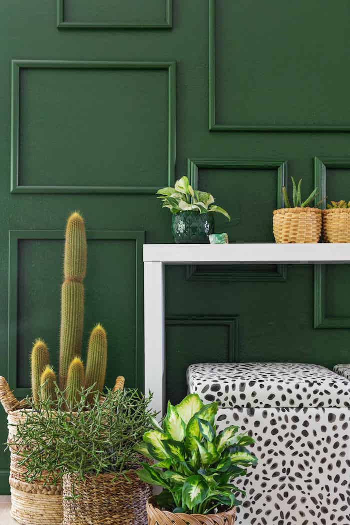 Salon cosy amenager petit salon decoration salon contemporain mur vert plantes originale idee design