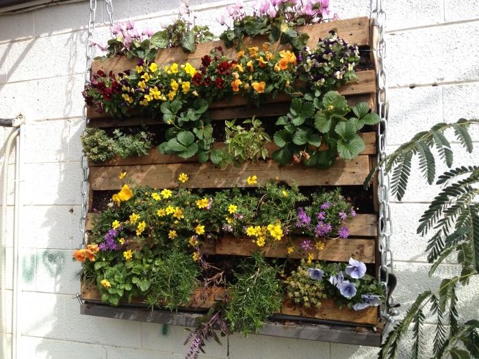 idée originale pour un mur vegetal en palette suspendu avec chaîne, composé d'une variété de fleurs, pour dynamiser les murs du balcon ou du jardin