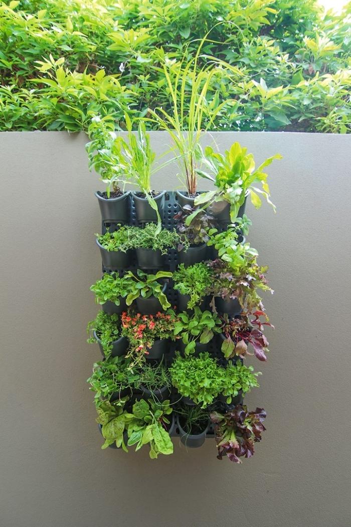 système de mur végétal extérieur composé d'un panneau en pvc et des modules