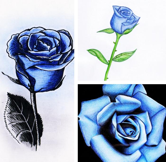 exemple de dessin de rose bleu au crayon, comment dessiner une rose ouverte ou fermée, technique pour dessiner facilement une fleur