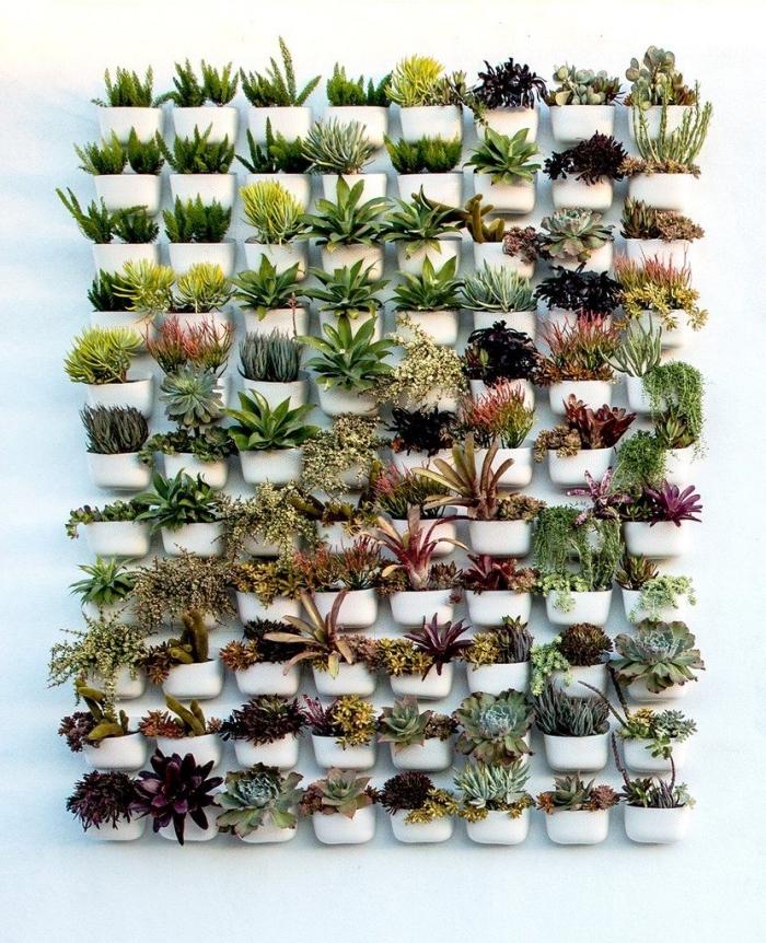 une multitude de pots plastique avec des plantes variées pour composer un mur végétalisé original et harmonieux pour l'extérieur ou l'intérieur