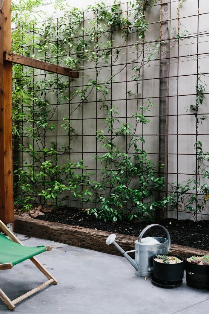 un treillis en métal comme support des plantes grimpantes, comment réaliser un mur vegetal exterieur avec des plantes grimpantes