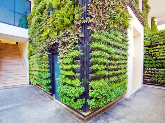 une façade végétalisée d'une maison moderne avec des murs végétaux modulaires sur mesure qui constitue un coin de verdure inattendu