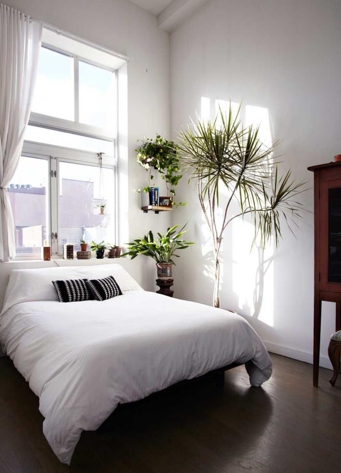 décoration minimaliste dans une petite chambre bohème aux murs blancs avec parquet foncé et plusieurs plantes vertes