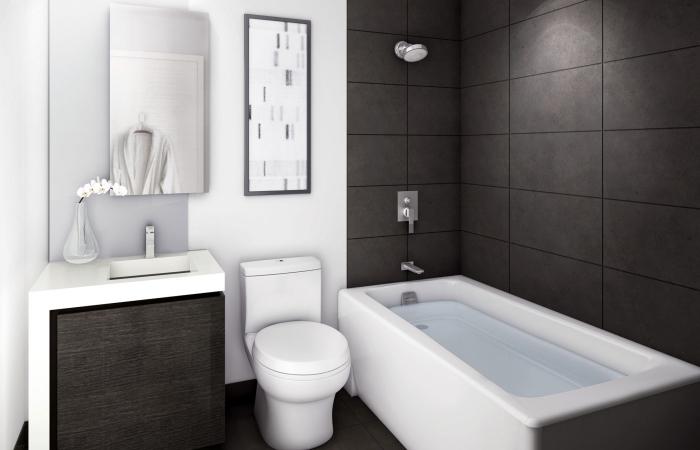 design intérieur moderne en blanc et noir avec baignoire, modèle carrelage couleur gris anthracite dans petite salle de bain