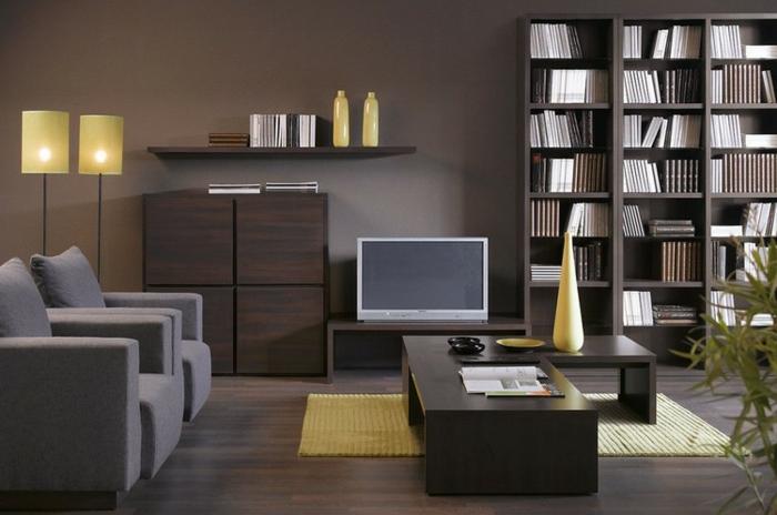 salon décoration sombre lignes épurées, table wengé basse, étagère bibliothèque