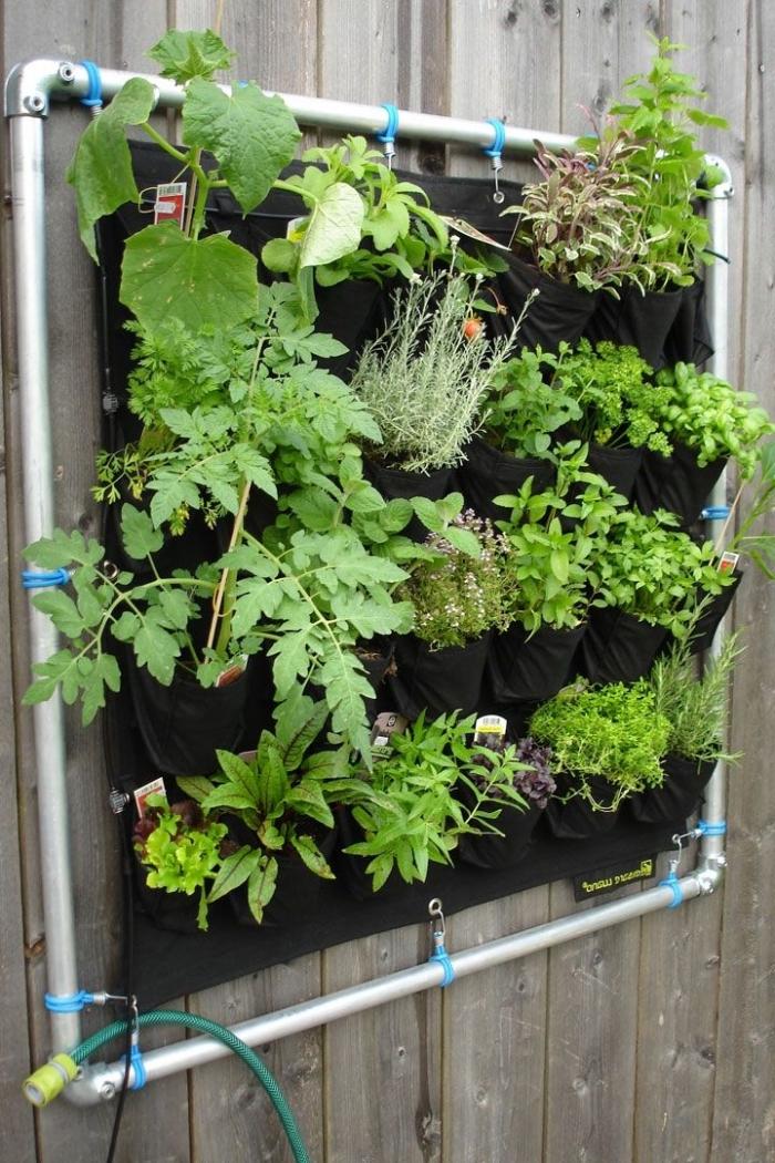 comment réaliser un mur végétal extérieur avec sac poche de plantation et un système d'irrigation adapté