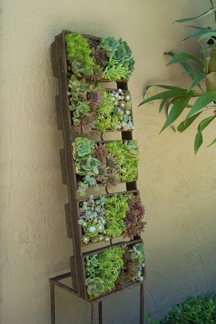 comment réaliser un tableau vegetal avec des matériaux récup, un tableau végétal de plantes grasses en structure de bois et métal récup