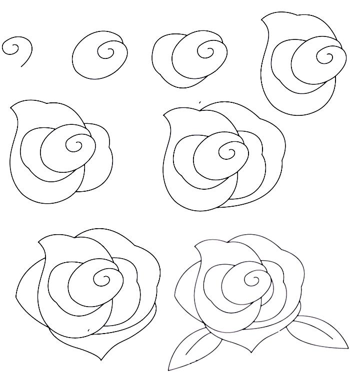 tutoriel pour apprendre comment dessiner facilement une rose ouverte avec feuilles, dessin au crayon blanc et noir