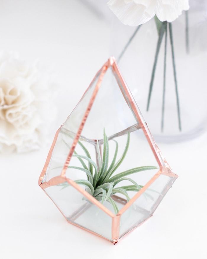 modèle de terrarium facile DIY avec succulents et bords à design rose gold, idée activité manuelle avec plantes vertes