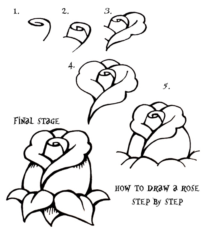 dessin etape par etape pour apprendre à dessiner facilement une rose fermée, éléments de rose à dessiner pétales et feuilles, dessiner une rose pas à pas