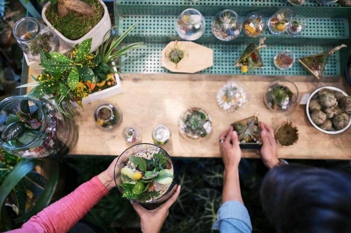 comment fabriquer un terrarium facile ouvert dans un contenant en verre rempli de galets et de terreau avec plantes humides ou plantes sol sec
