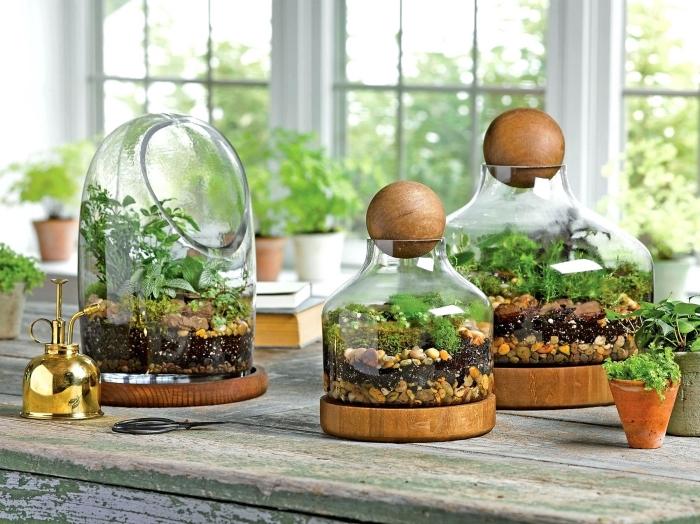 modèles de récipient en verre pour mini jardin avec galets et plantes vertes, idée comment faire un terrarium facile