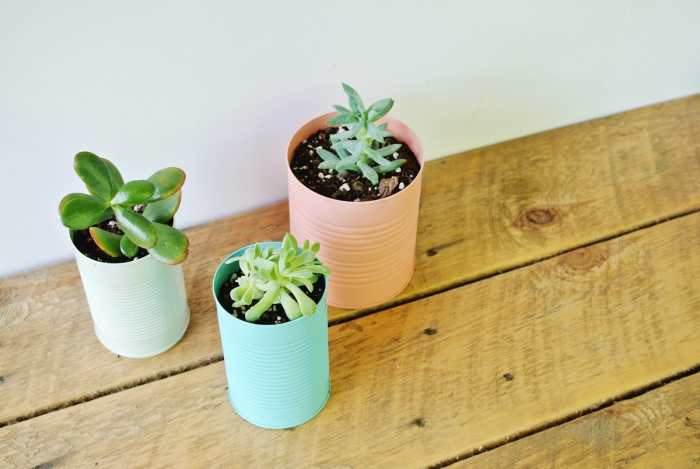 comment recycler des boîtes de conserves en pots pour plantes modernes, idée originale d'objet recyclé en pot pour plantes