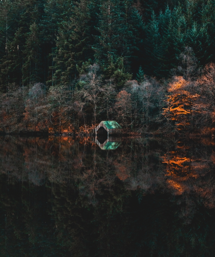 cabane à toiture verte dans les bois, rivière qui passe par la forêt, arbres en couleurs d'automne