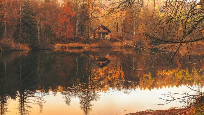 cours d'eau dans la forêt, réflexions des arbres dans l'eau, coucher du soleil, images fond d'écran