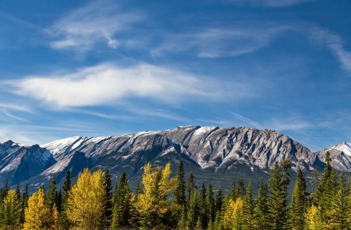 montagne rocheuse, ciel bleu, sapins et arbres au feuillage jaune, paysage d'automne