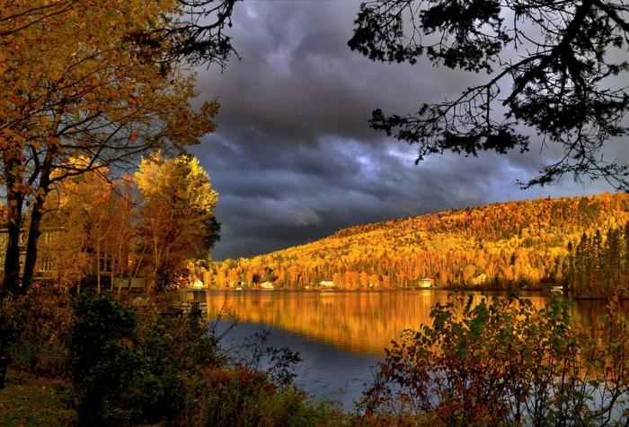 ciel d'orage, une rive de rivière dorée par le soleil, arbres au feuillage jaune, paysage d'automne