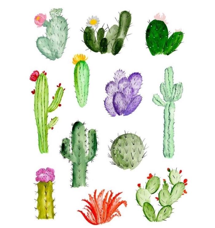 jolie collection de cactus à l'aquarelle en différentes nuances du vert, dessin aquarelle facile pour apprendre à mélanger les couleurs