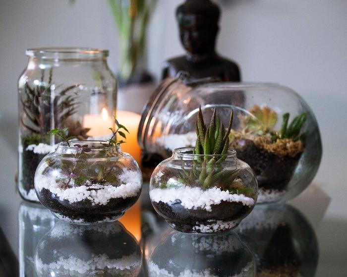 ambiance zen avec objets diy faciles, modèles de terrariums diy dans bocaux en verre ouverts, idées plantes pour mini jardin