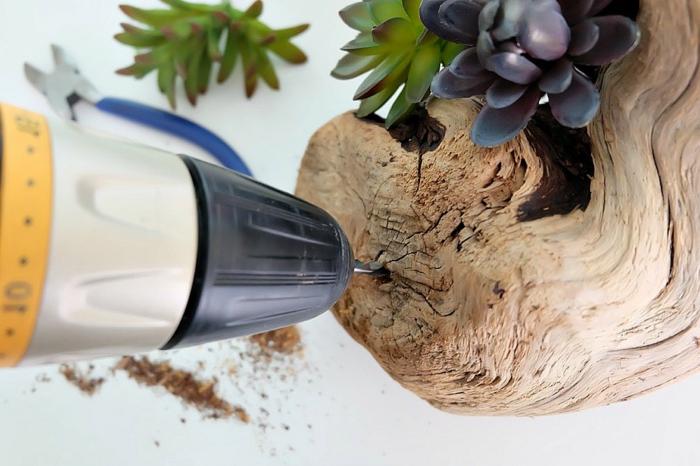 décoration pour la table, bois flottée et faux succulents, morceau de bois troué avec une perseuse