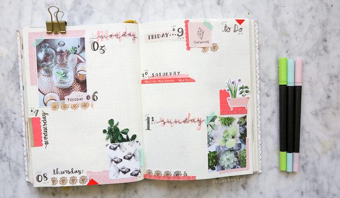photos de plantes, dessins de fleurs pour customiser son semainier, bandes de washi tape décoratives, bullet journal idées