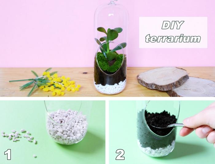 tutoriel pour mettre une plante en bocal fermé ou demi-fermé avec couches de terreau spécial et de galets