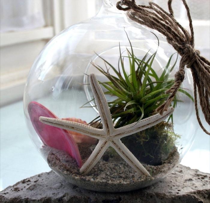 exemple de terrarium bocal avec plantes vertes et sable, modèle de mini jardin de mer dans un aquarium en verre
