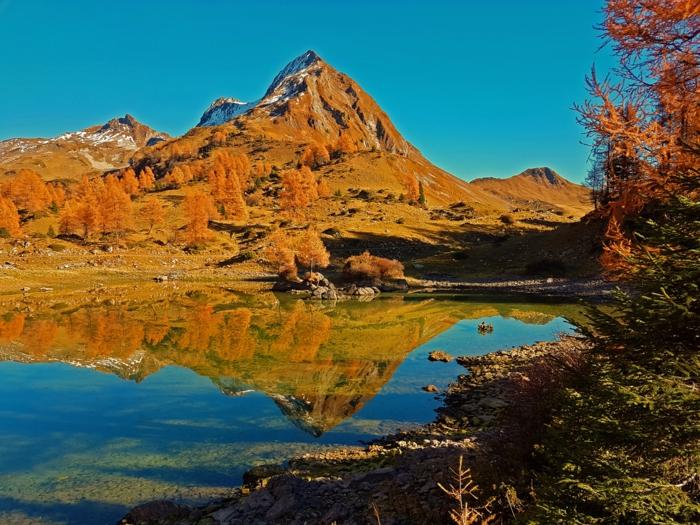 la montagne et sa réflexion en automne, lac de montagne, arbres jaunes et sapins verts, fond ecran automne