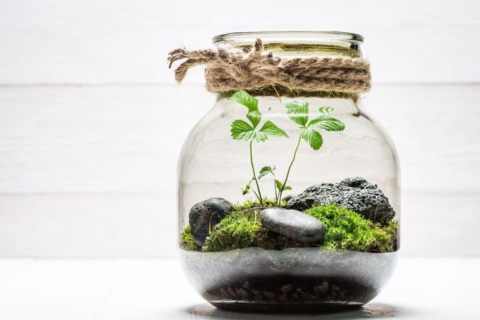 joli modèle de jardin miniature dans un bocal en verre transparent ouvert avec déco en cordelette mousse et galets