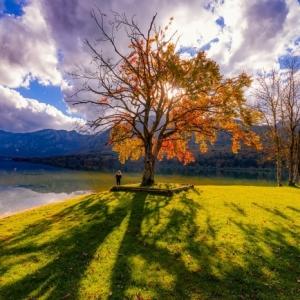 En quête du meilleur paysage d'automne - plus de 100 photos inspirantes
