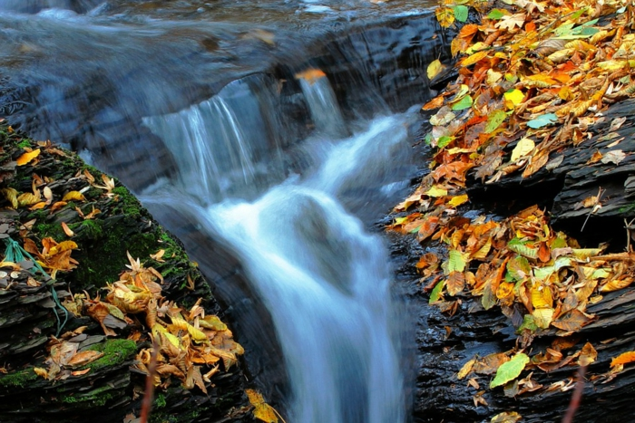 petite cascade, feuilles d'automne tombées sur les roques couvertes de mousse verte