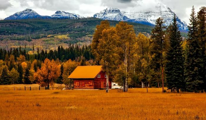 fond ecran automne, plaine de blé mur, sommets de la montagne enneigés, maison près de la fôret