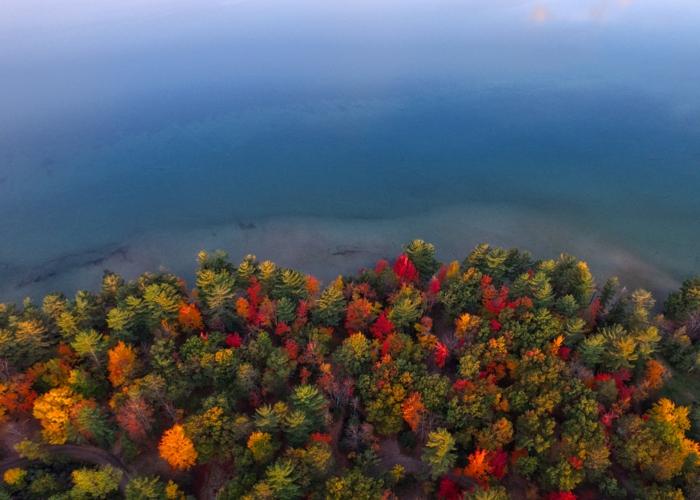 cours d'eau et rive à vue aérienne, arbres au coloris d'automne, forêt bigarrée