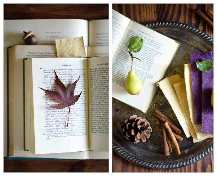 idee de decoration facile faire avec pores, feuilles mortes, pommes de pin, batons de cannelle livre, façon nature morte