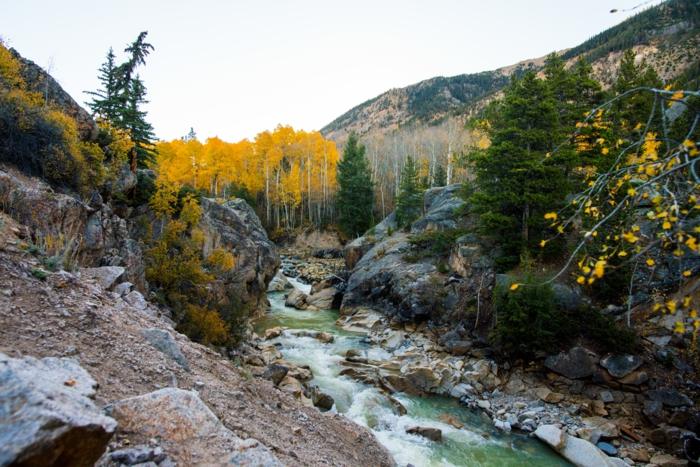 défilé pittoresque au sein de la montagne, forêt de bouleaux, roques près de l'eau