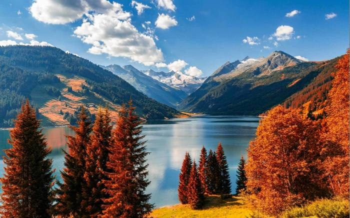 fond d'écran automne, pins, clairières éclairées par le soleil, nuages blancs, défilé magnifique