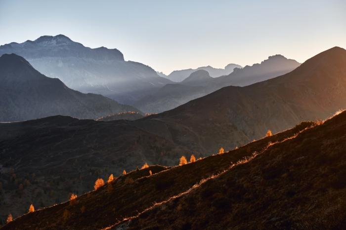 arbres au feuillage doré sur les pentes de la montagne, chaîne de montagne