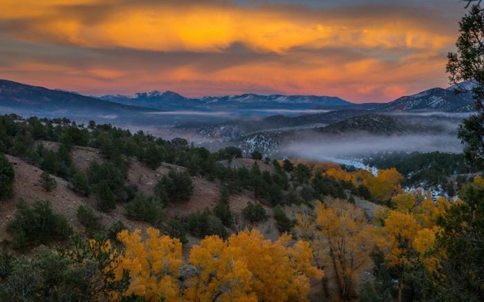 fond d'écran coucher du soleil, pentes, arbres aux feuilles d'or, brume, paysage mystique