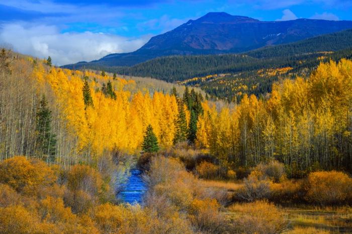 fond d'écran forêt mixte, rivière bleue, arbres aux feuilles d'or, montagne et ciel bleu