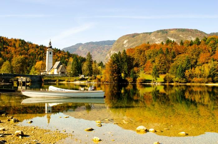 forêt et rivière, rives teintées de couleurs automnales, jolie paysage automne