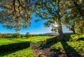 En quête du meilleur paysage d'automne – plus de 100 photos inspirantes