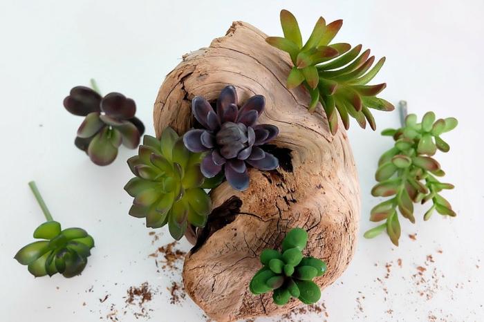faux succulents, bois flotté, colle et perceuse- le matériel pour une déco fantastique