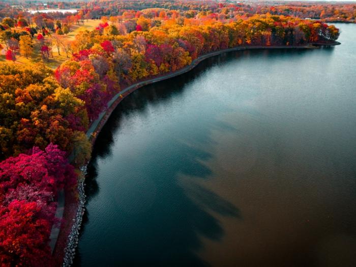 fond d'écran baie et rive aux arbres aux couleurs de l'automne, jolie paysage
