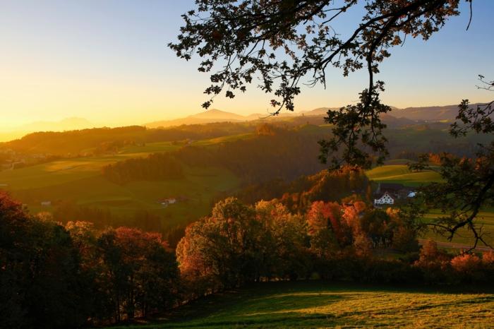 joli paysage pour fond d'écran, plaines vertes, montagnes et arbres vêtus aux couleurs de l'automne
